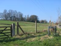Field on Halves Lane